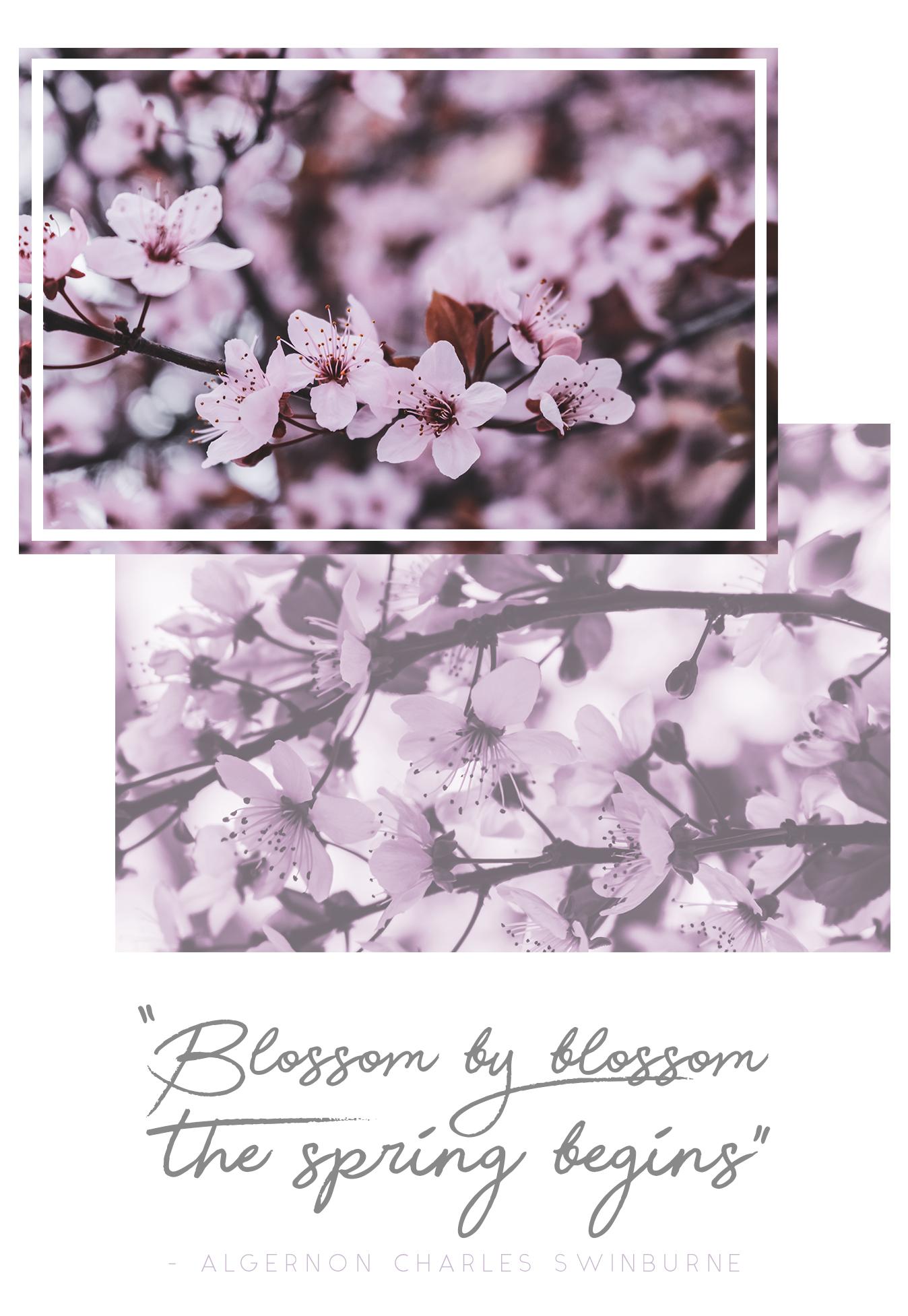 Spring Moodboard: Composición de fotos primaverales junto con una cita