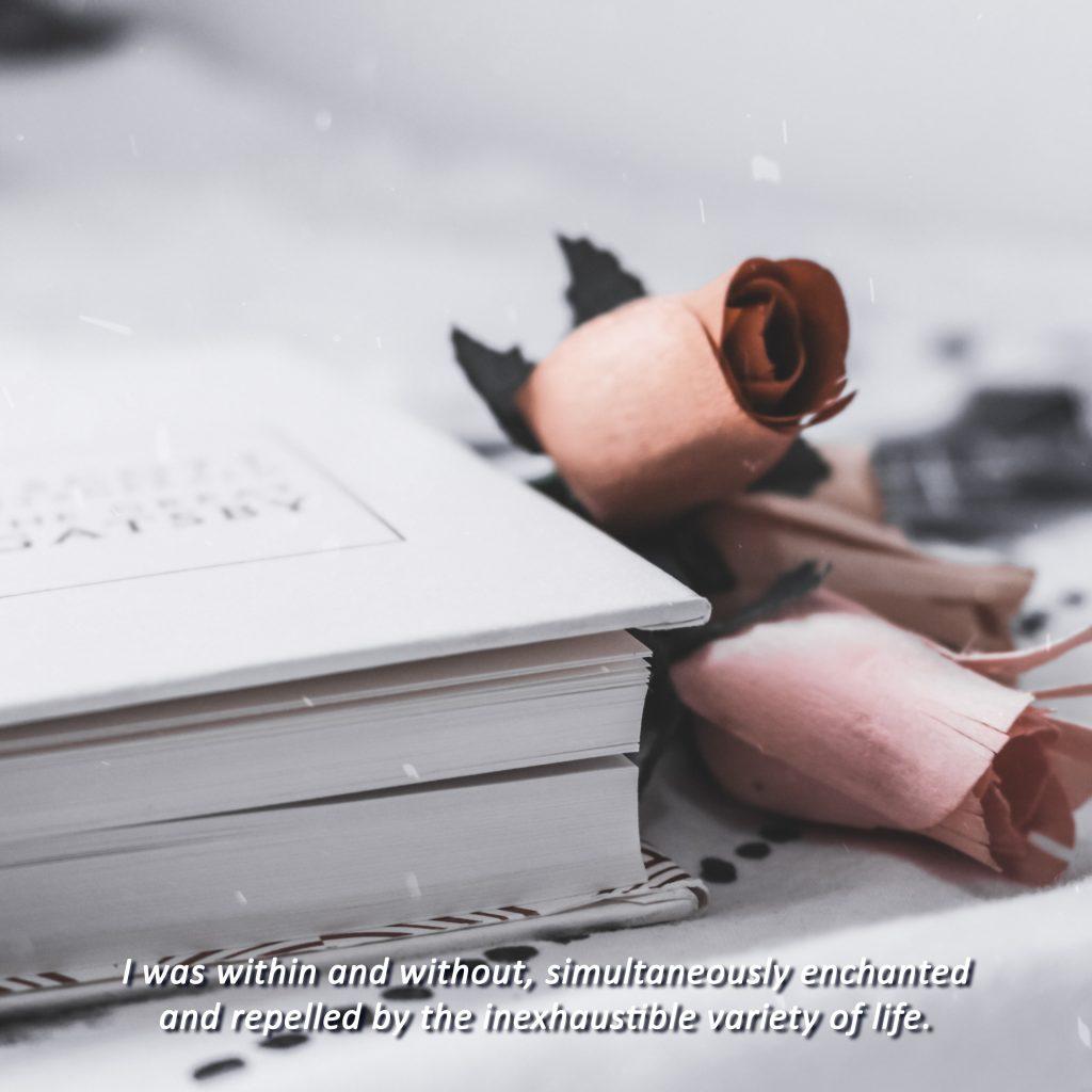 "Foto del libro de El Gran Gatsby y unas rosas con la frase en subtítulos ""I was within and without, simultaneously enchanted and repelled by the inexhaustible variety of life"""